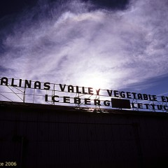 Salinas Valley Vegetable Exchange